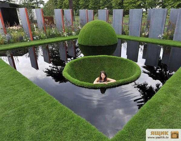 газон и бассейн