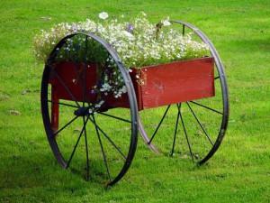 помощник по хозяйству для стрижки газона