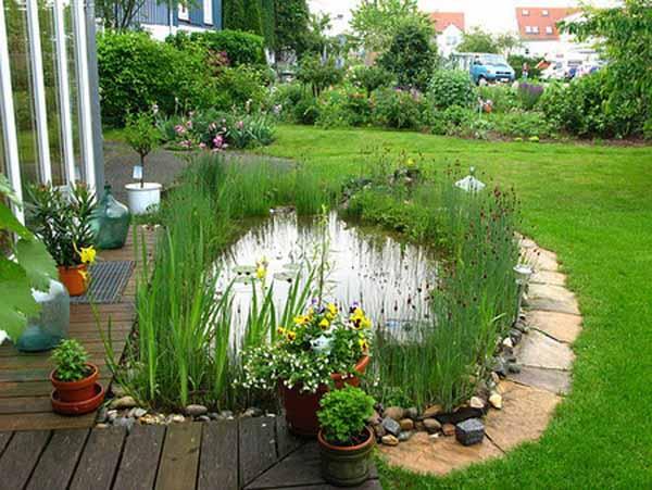 газон на дача, декоративный пруд